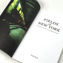 Fields of New York: European writers acquiring freedom